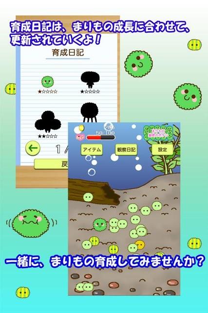 かわいい育成ゲーム 『まりまりも育成日記』のスクリーンショット_3