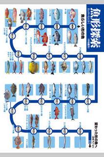 釣魚識別図鑑-ここで見分けようのスクリーンショット_2