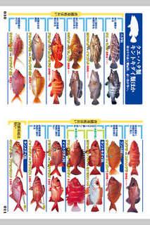 釣魚識別図鑑-ここで見分けようのスクリーンショット_3
