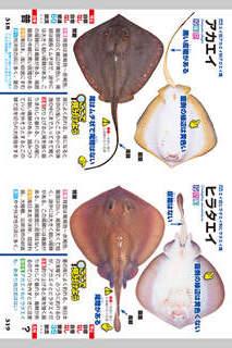 釣魚識別図鑑-ここで見分けようのスクリーンショット_5