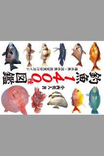 釣魚1400種図鑑 海水魚・淡水魚完全見分けガイドのスクリーンショット_1