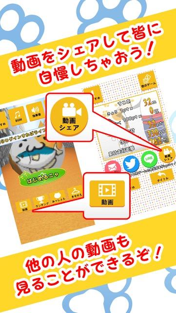 よけねこ 〜猫じゃらし〜 避けゲーかわいい人気アクションのスクリーンショット_3