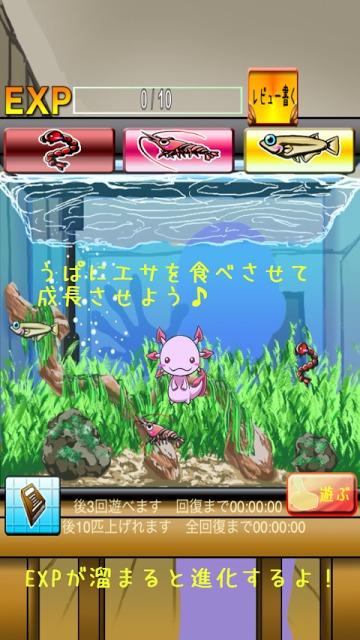 うぱの進化日記のスクリーンショット_1