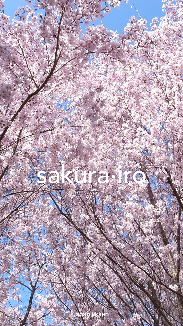 japan jikkan - englishのスクリーンショット_1