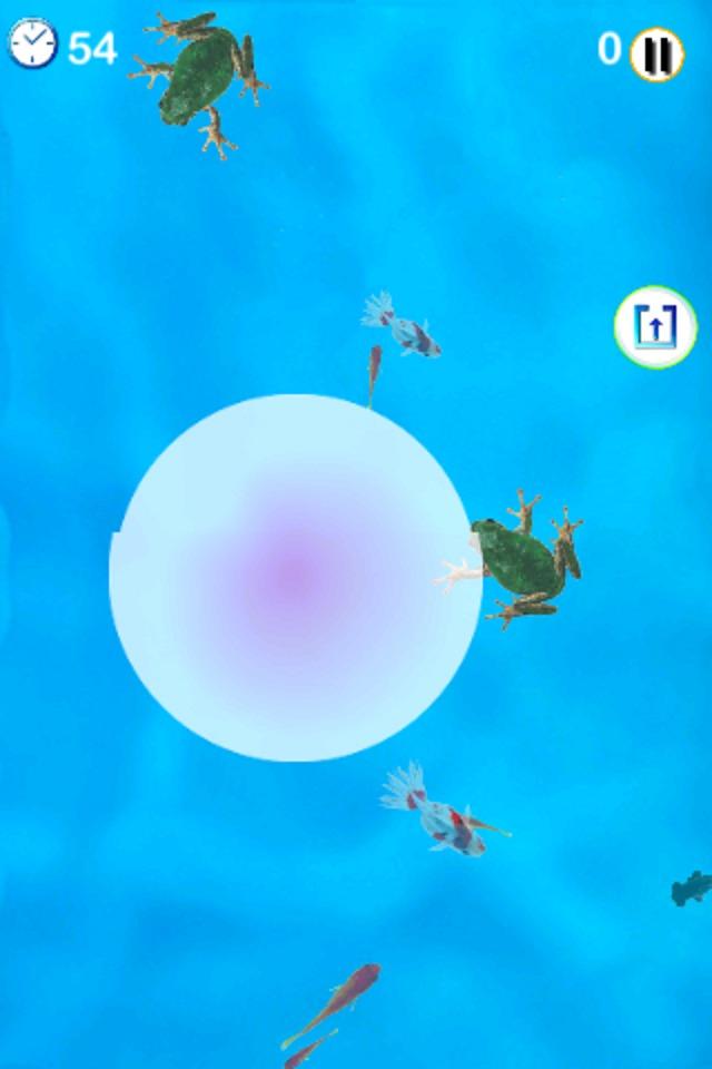 金魚すくいアプリのスクリーンショット_3