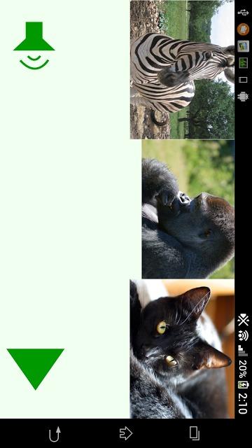 動物鳴き声クイズ(子供向け)のスクリーンショット_1