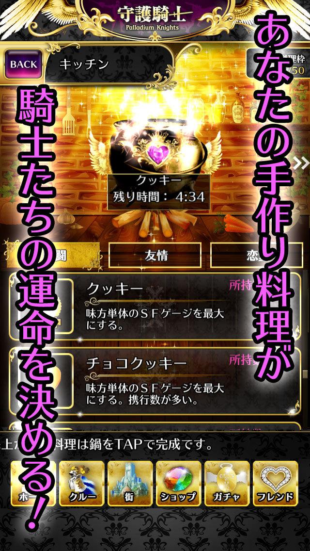 Palladium Knights~守護騎士~のスクリーンショット_4