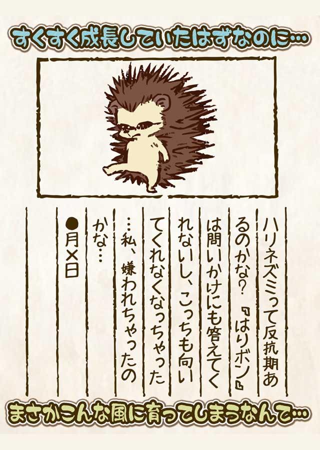 はりボン育成~愛しのハリネズミ育成日記~のスクリーンショット_2