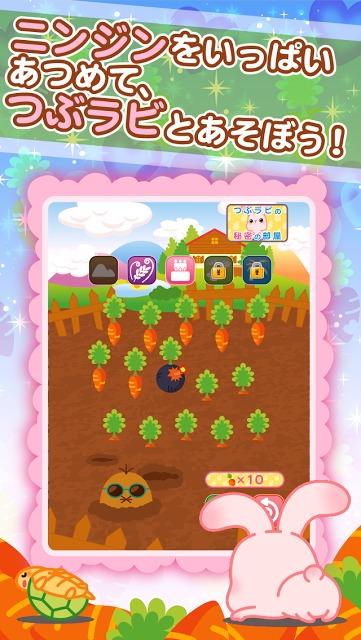 つぶラビ!〜かわいいうさぎの育成ゲームのスクリーンショット_3