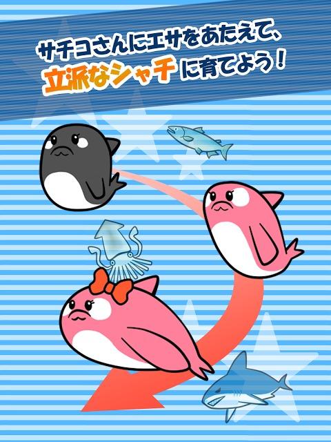 【無料育成ゲーム】シャチのサチコさんのスクリーンショット_1