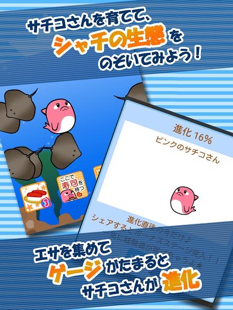 【無料育成ゲーム】シャチのサチコさんのスクリーンショット_2