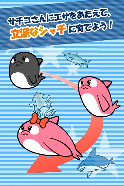 【無料育成ゲーム】シャチのサチコさんのスクリーンショット_4
