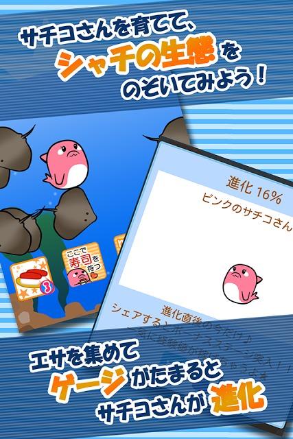 【無料育成ゲーム】シャチのサチコさんのスクリーンショット_5