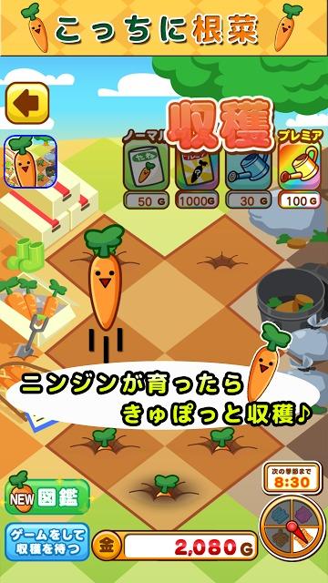 こっちに根菜~ニンジン編~のスクリーンショット_3