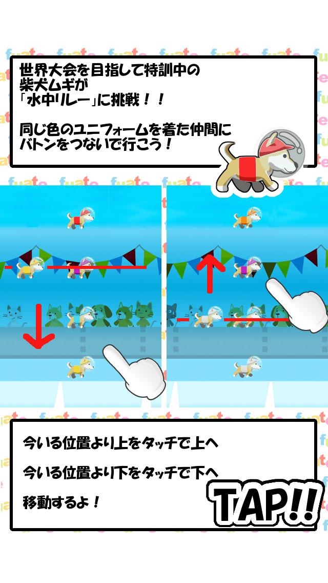 柴犬ムギ - 水中リレー世界大会への挑戦のスクリーンショット_3