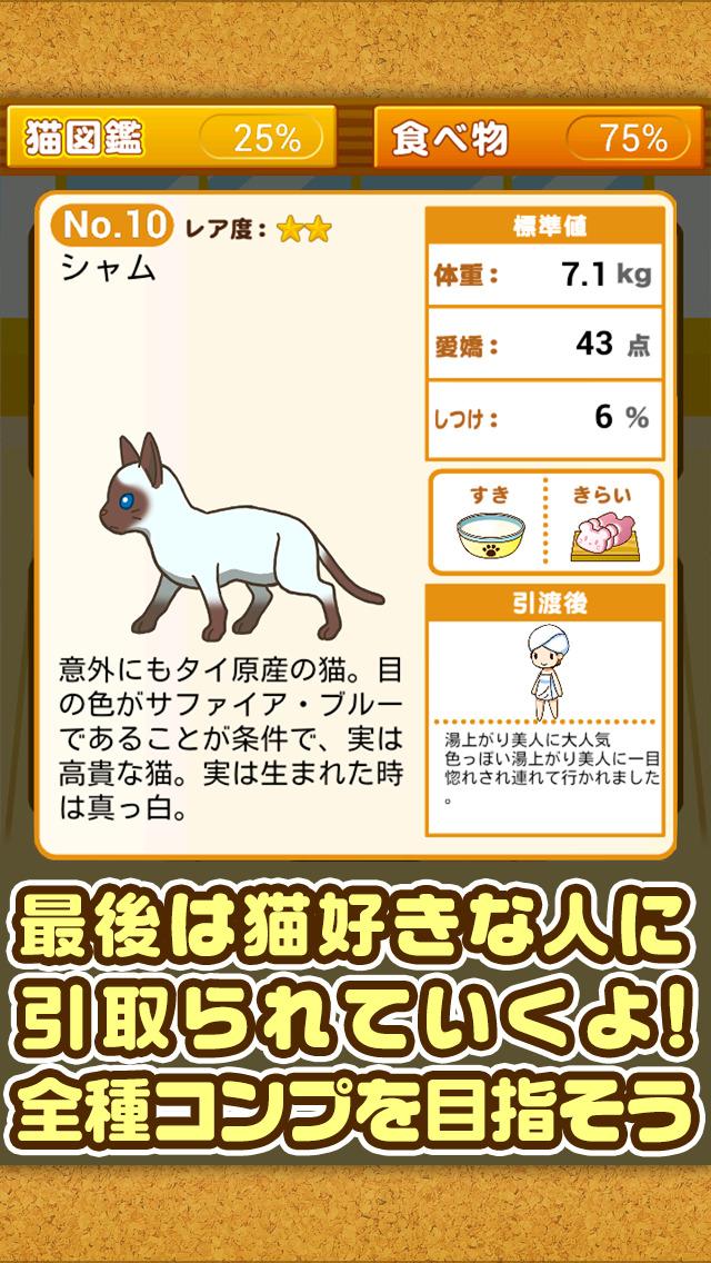 ねこカフェ~猫を育てる楽しい育成ゲーム~のスクリーンショット_5