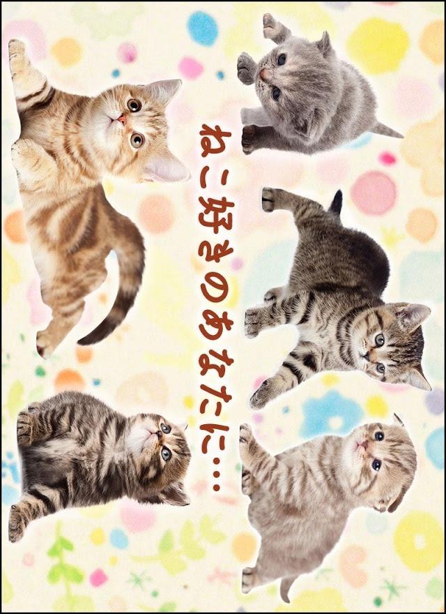 ねこめくり トランプ猫ソリティア 人気アプリ 完全無料ゲームのスクリーンショット_1
