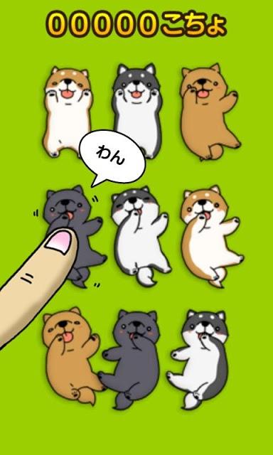 こちょ いぬ三昧〜かわいい犬アプリ〜のスクリーンショット_1