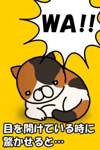 どっきりねこ〜かわいい猫アプリ〜のスクリーンショット_3