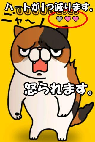 どっきりねこ〜かわいい猫アプリ〜のスクリーンショット_4
