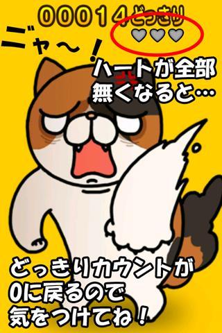 どっきりねこ〜かわいい猫アプリ〜のスクリーンショット_5
