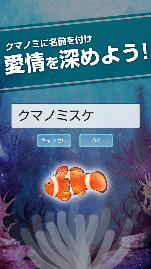 自分だけのクマノミ育成 - 無料で簡単 カクレクマノミ育成ゲームのスクリーンショット_3