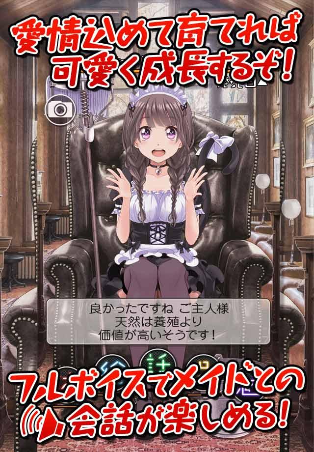 恋愛タップコミュニケーションゲーム 週刊マイメイドのスクリーンショット_3