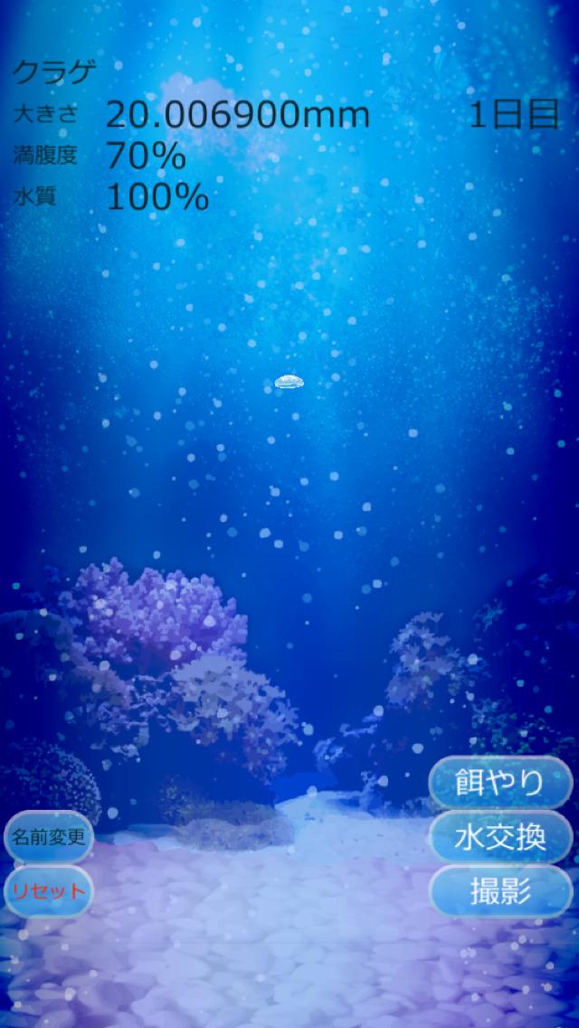 癒しのクラゲ育成ゲームのスクリーンショット_4