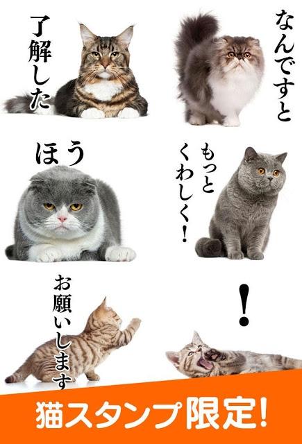 猫スタンプ 無料のスクリーンショット_1