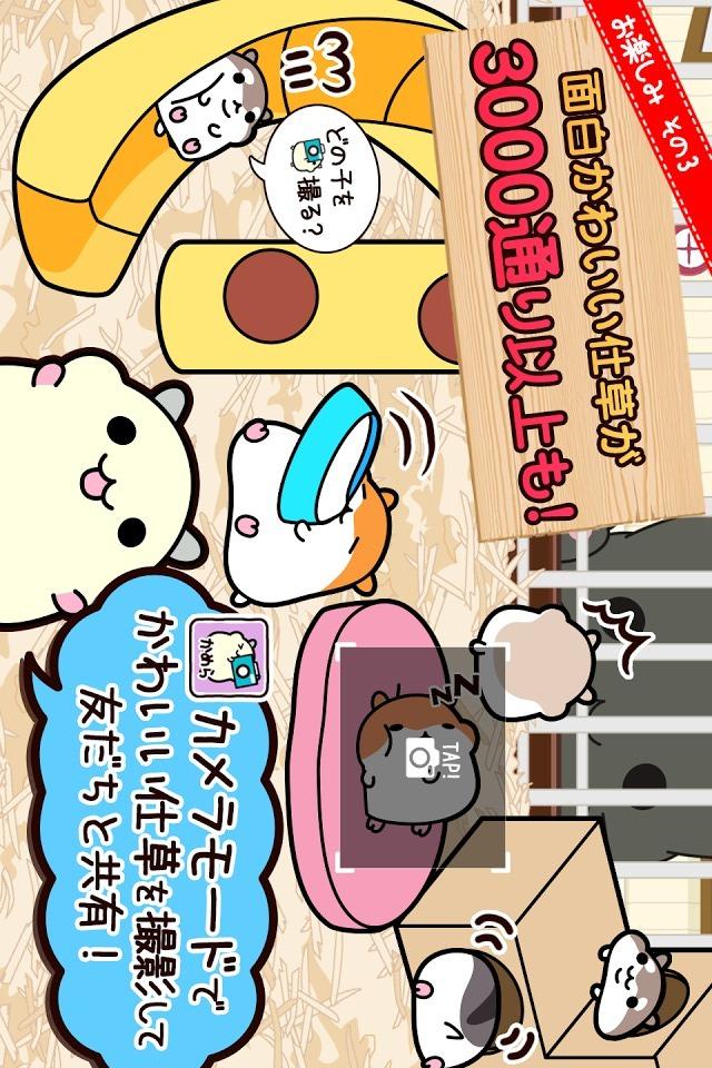 ハムスターコレクション◆無料ペット育成ゲーム!のんびりライフのスクリーンショット_5
