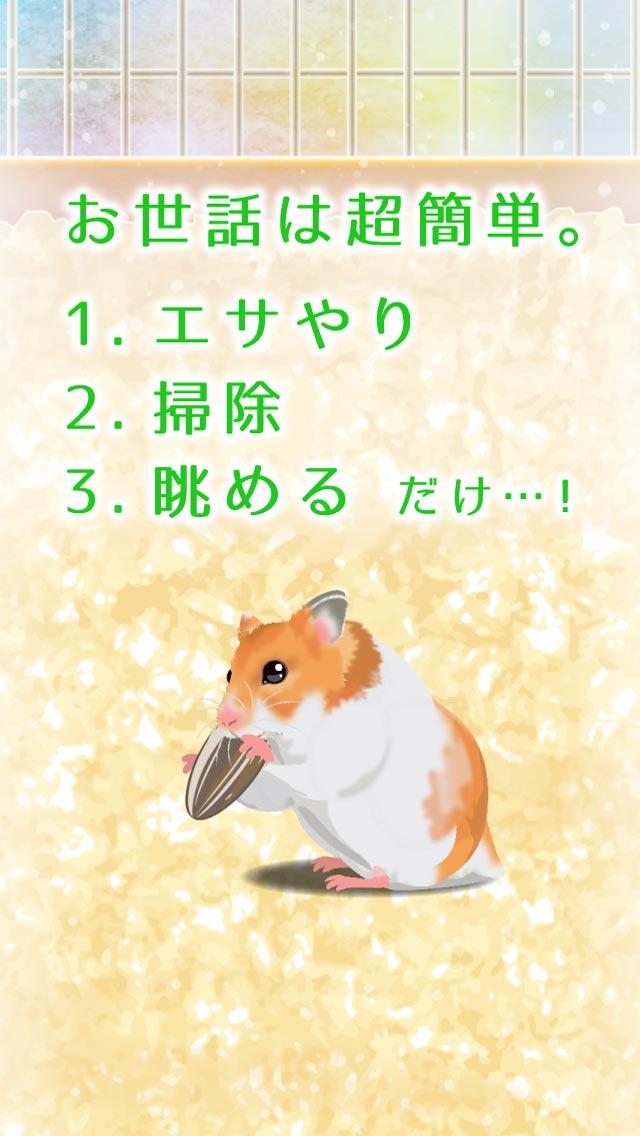 癒しのハムスター育成ゲームのスクリーンショット_2