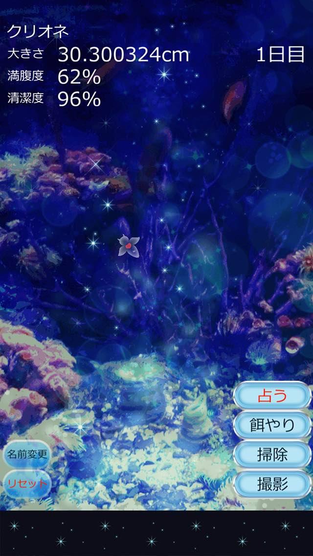 しあわせのクリオネ育成ゲームのスクリーンショット_4