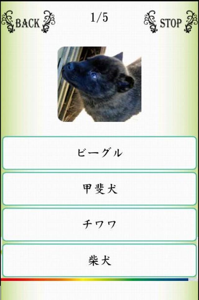 Names/わんにゃばー いろんな名前覚えよう(犬・猫・鳥)のスクリーンショット_5