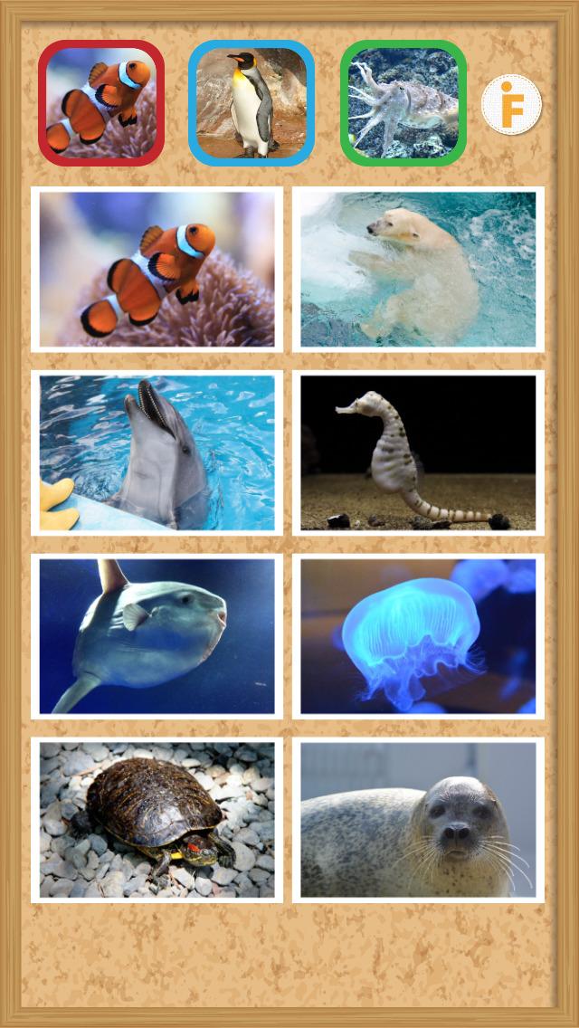 とびだす水族館のスクリーンショット_2