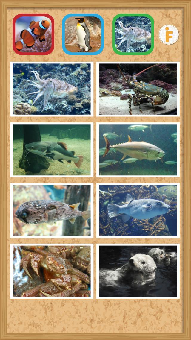 とびだす水族館のスクリーンショット_4