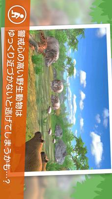 リアルサファリ - 動物をさがそうのスクリーンショット_4