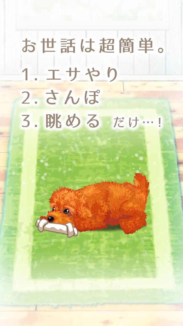 癒しの子犬育成ゲーム〜トイプードル編〜のスクリーンショット_2