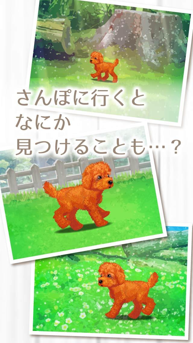 癒しの子犬育成ゲーム〜トイプードル編〜のスクリーンショット_4