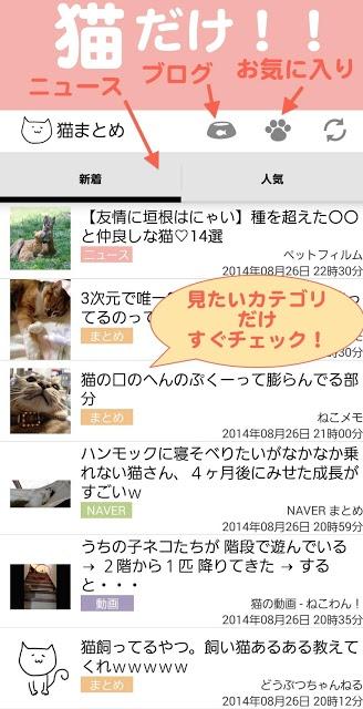 猫まとめ - 猫だらけのねこ情報まとめアプリのスクリーンショット_1