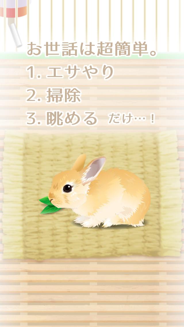 癒しのウサギ育成ゲーム(無料)のスクリーンショット_2