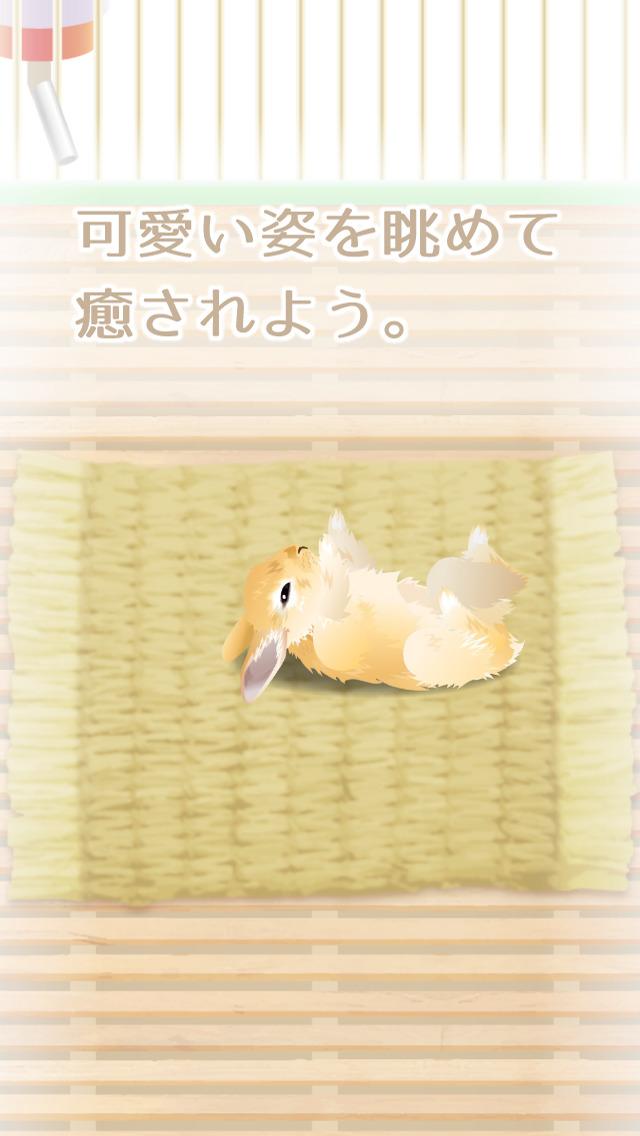 癒しのウサギ育成ゲーム(無料)のスクリーンショット_3