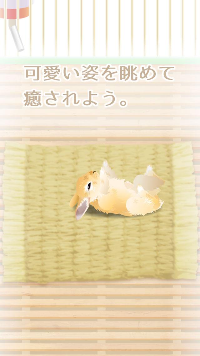 癒しのウサギ育成ゲームのスクリーンショット_3