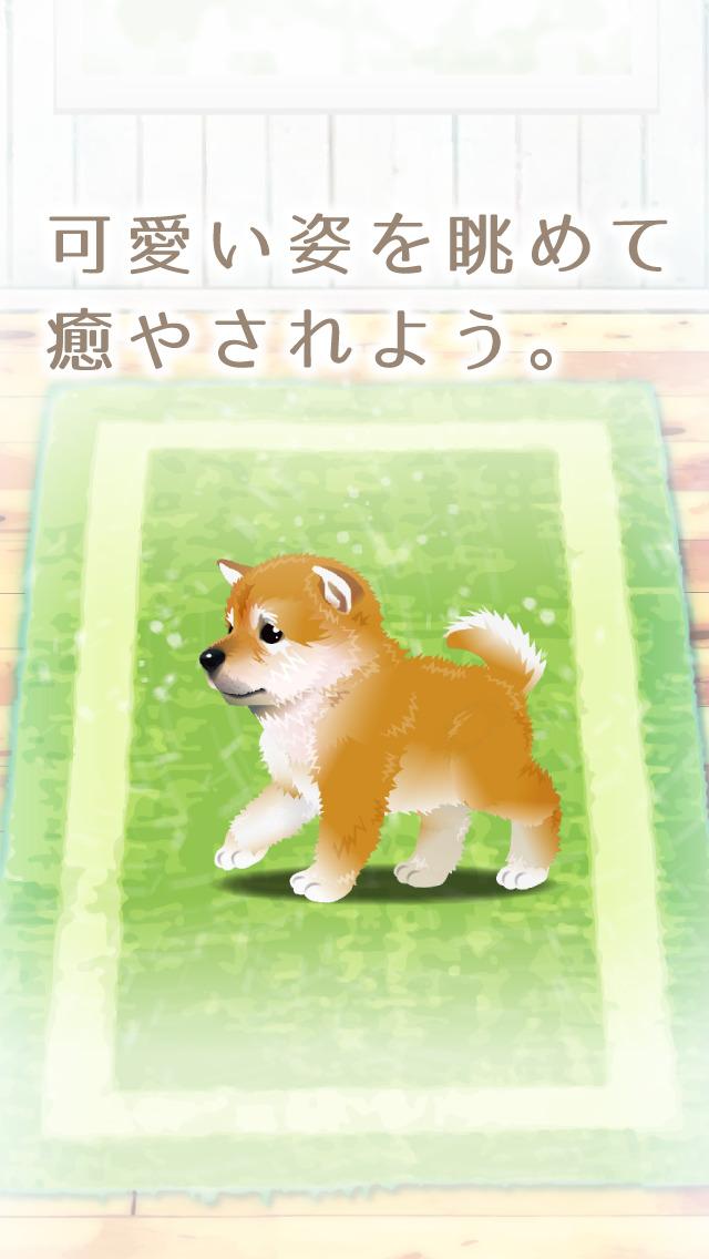 癒しの子犬育成ゲーム〜柴犬編〜(無料)のスクリーンショット_5
