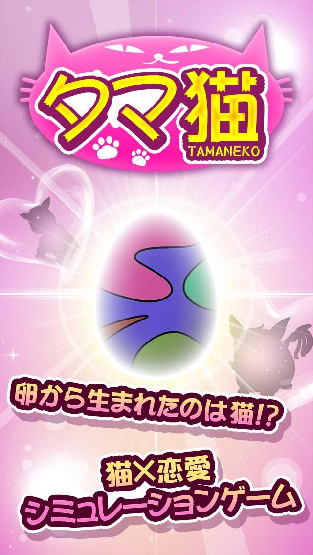 タマ猫 ◆猫 x 恋愛シミュレーションゲームのスクリーンショット_1