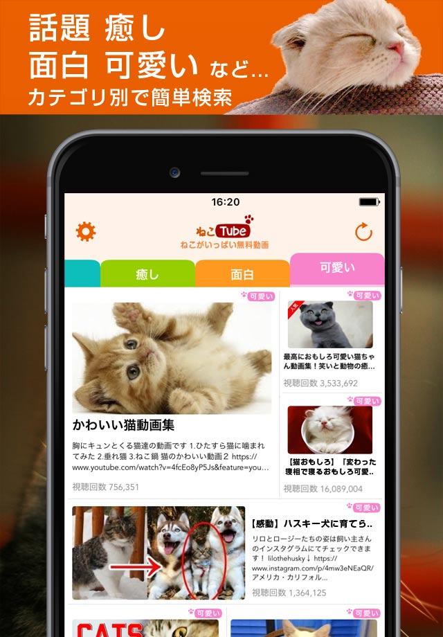 ねこTube for YouTube 癒しの猫動画まとめアプリのスクリーンショット_2