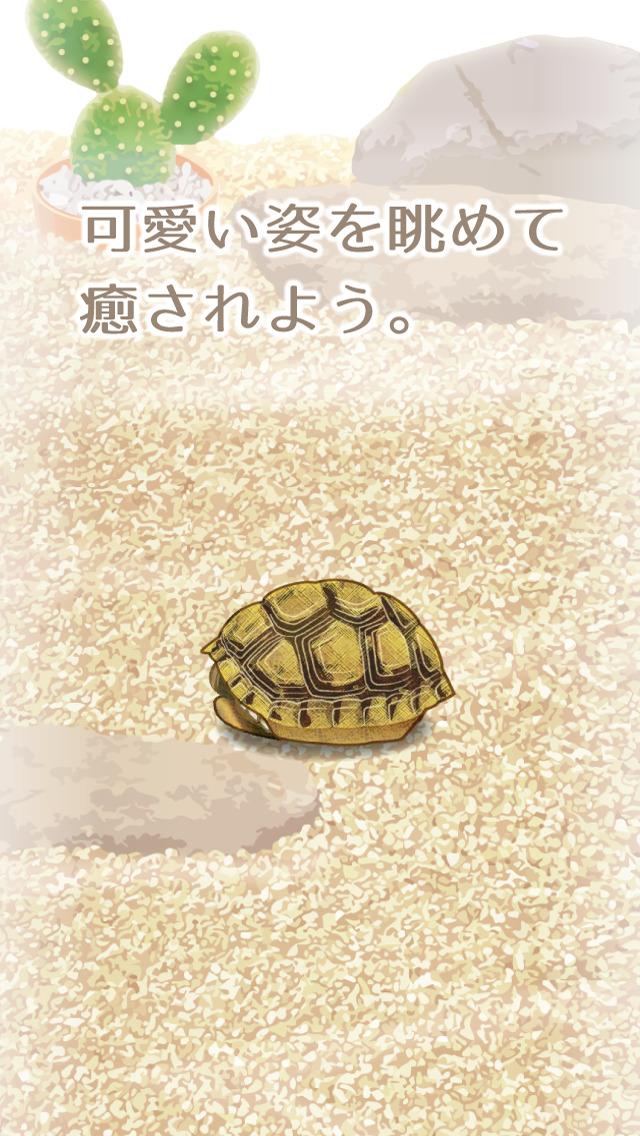 癒しのカメ育成ゲーム(無料)のスクリーンショット_3