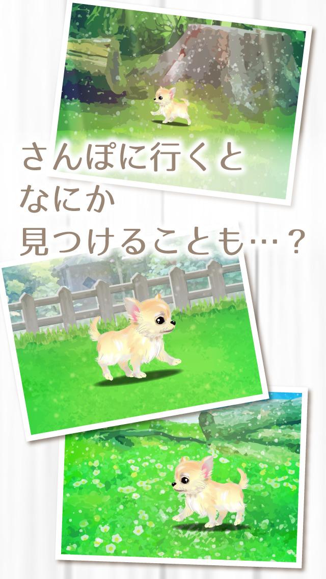 癒しの子犬育成ゲーム〜チワワ編〜(無料)のスクリーンショット_4