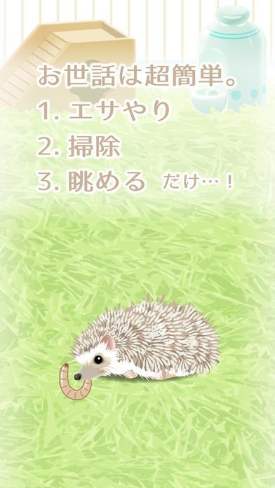 癒しのハリネズミ育成ゲーム(無料)のスクリーンショット_2