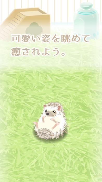 癒しのハリネズミ育成ゲーム(無料)のスクリーンショット_3