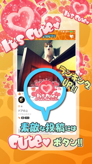 SNAP PETS~スナップペット・ペット写真・情報共有コミュニティ~のスクリーンショット_3